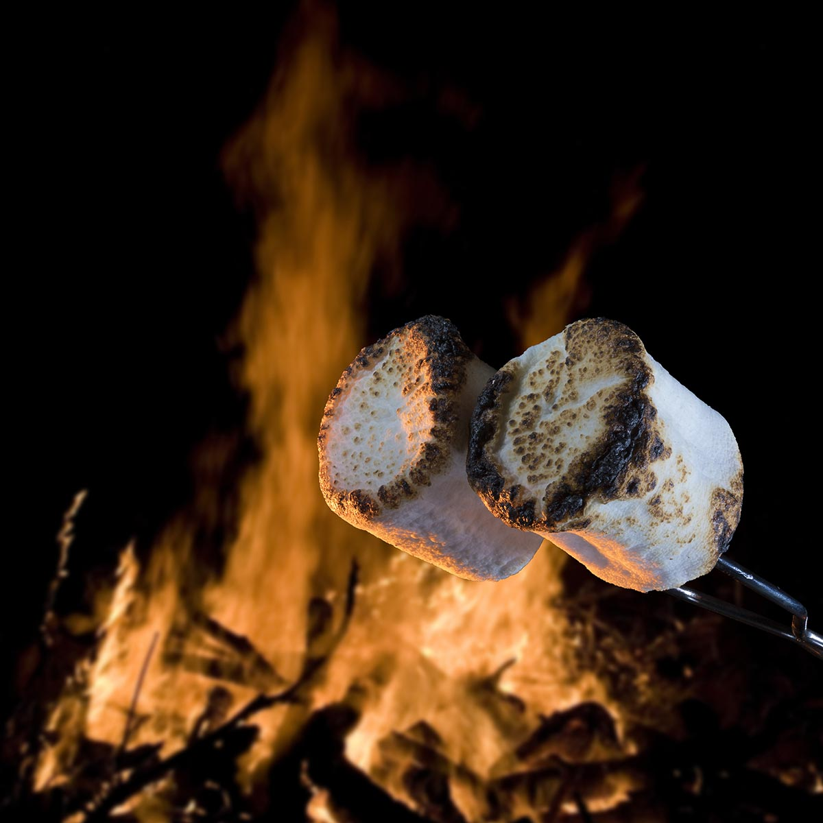 marshmallows roasting over a campfire, Guy Sagi, camping cooking, The Year Santa Came Back, time to reserve your campsite